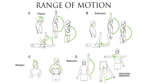 range of motion exercises